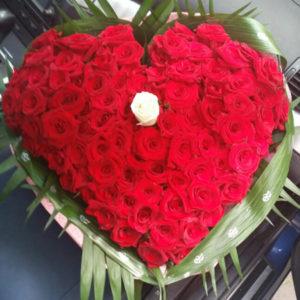 Букет от 101 рози NV492